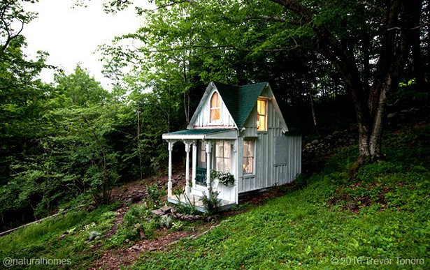 tiny house wit